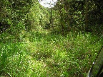 http://www.estacoesferroviarias.com.br/pr-tronco/fotos/tunel-fabiorego06.jpg